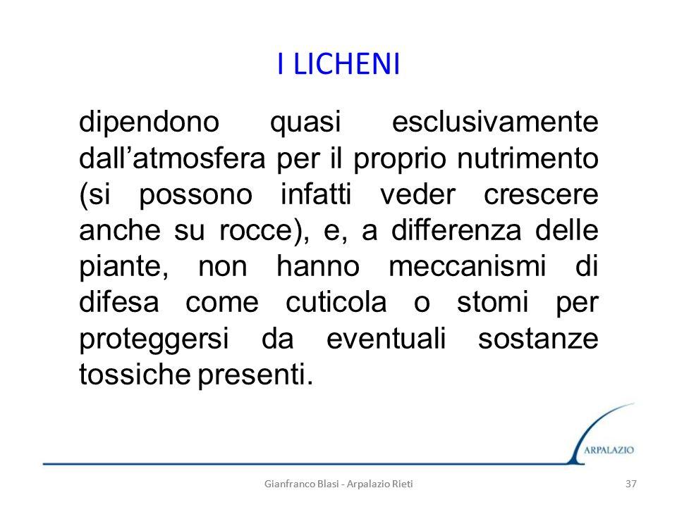 Gianfranco Blasi - Arpalazio Rieti 37 I LICHENI 37Gianfranco Blasi - Arpalazio Rieti dipendono quasi esclusivamente dallatmosfera per il proprio nutri