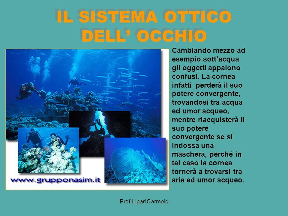 Prof.Lipari Carmelo IL SISTEMA OTTICO DELL OCCHIO Cambiando mezzo ad esempio sottacqua gli oggetti appaiono confusi.