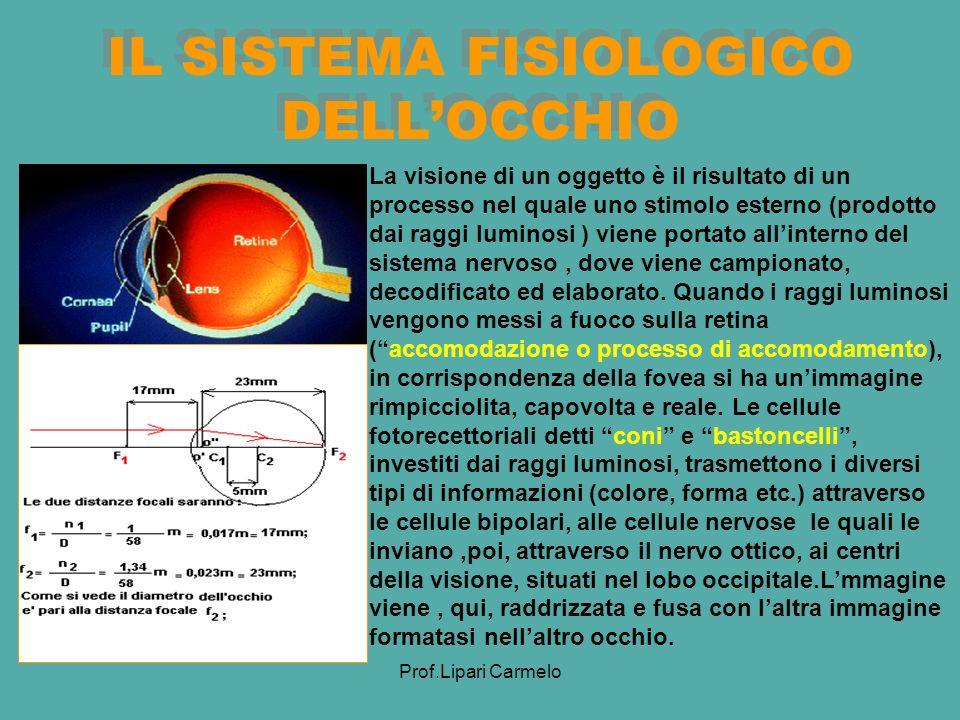 Prof.Lipari Carmelo IL SISTEMA FISIOLOGICO DELLOCCHIO La visione di un oggetto è il risultato di un processo nel quale uno stimolo esterno (prodotto dai raggi luminosi ) viene portato allinterno del sistema nervoso, dove viene campionato, decodificato ed elaborato.