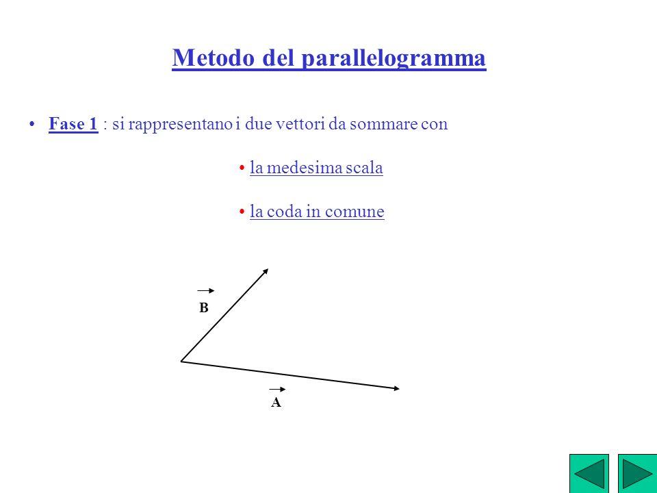 Metodo del parallelogramma Fase 1 : si rappresentano i due vettori da sommare con la medesima scala la coda in comune A B