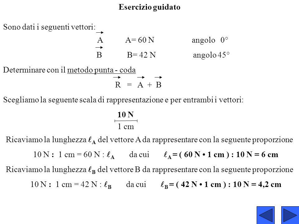 Sono dati i seguenti vettori: A A= 60 N angolo 0° B B= 42 N angolo 45° Determinare con il metodo punta - coda R = A + B Scegliamo la seguente scala di