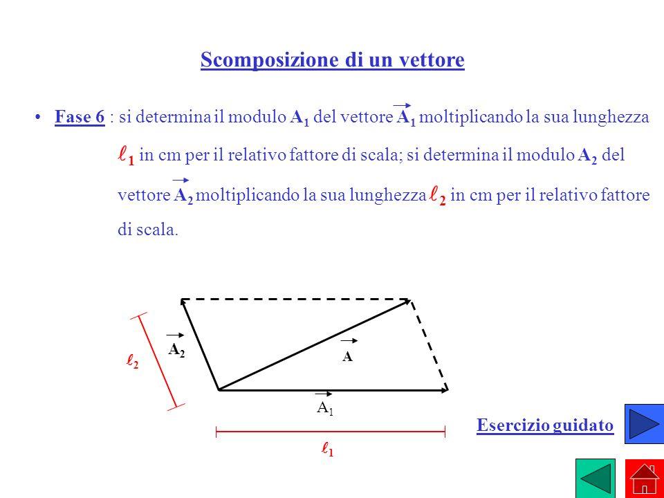 Scomposizione di un vettore Fase 6 : si determina il modulo A 1 del vettore A 1 moltiplicando la sua lunghezza 1 in cm per il relativo fattore di scal