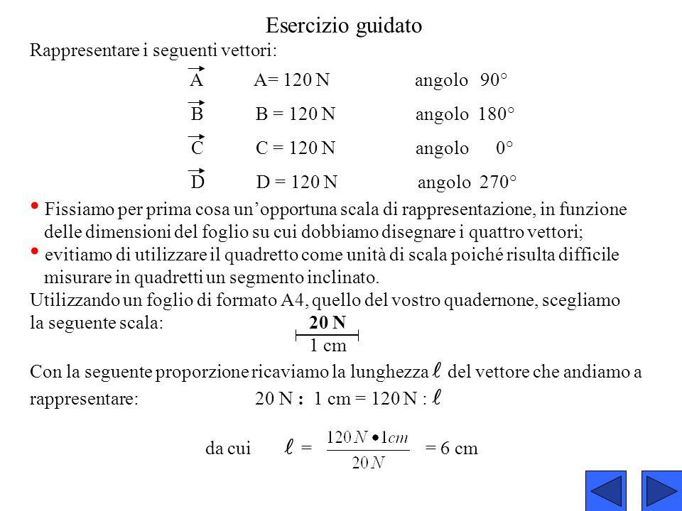 Esercizio guidato Rappresentare i seguenti vettori: A A= 120 N angolo 90° B B = 120 N angolo 180° C C = 120 N angolo 0° D D = 120 N angolo 270° Fissia