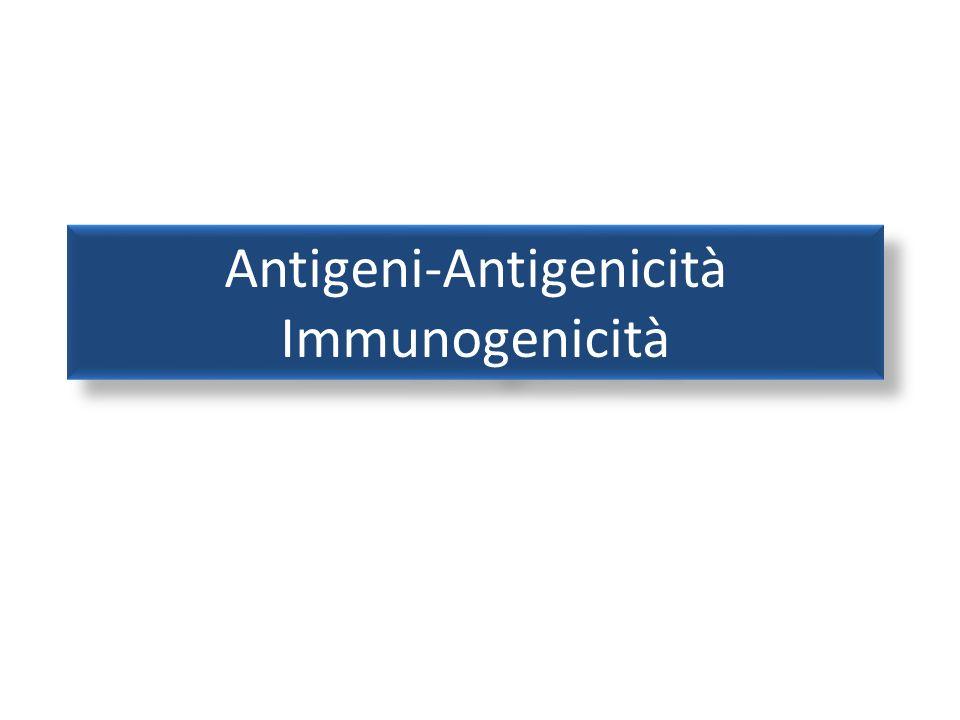 Antigeni (Ag) 2 Tutte le molecole in grado di attivare il sistema immunitario sono detti antigeni Normalmente gli Ag sono sostanze estranee allorganismo ad alto peso molecolare quali proteine e lipopolisaccaridi Non sono antigeni molecole a basso peso molecolare, anche se estranee, come per esempio alcuni farmaci disaccaridi ecc… Essi si possono trovare sulla superficie delle cellule oppure si possono trovare liberi (antigeni circolanti) La capacità di un Ag di combinarsi con un Ab riflette la sua antigenicità