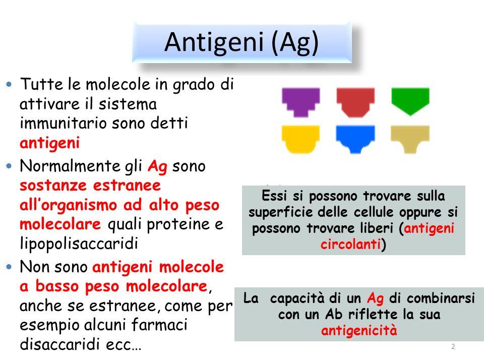 Antigeni (Ag) 2 Tutte le molecole in grado di attivare il sistema immunitario sono detti antigeni Normalmente gli Ag sono sostanze estranee allorganis