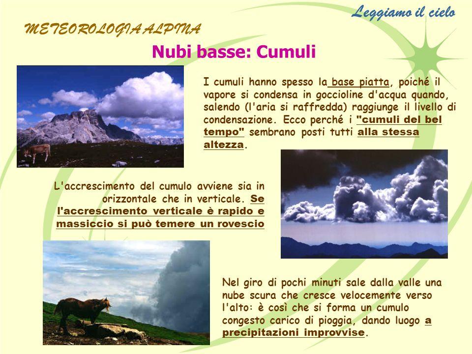 Leggiamo il cielo Nubi basse: Cumuli I cumuli hanno spesso la base piatta, poiché il vapore si condensa in goccioline d'acqua quando, salendo (l'aria