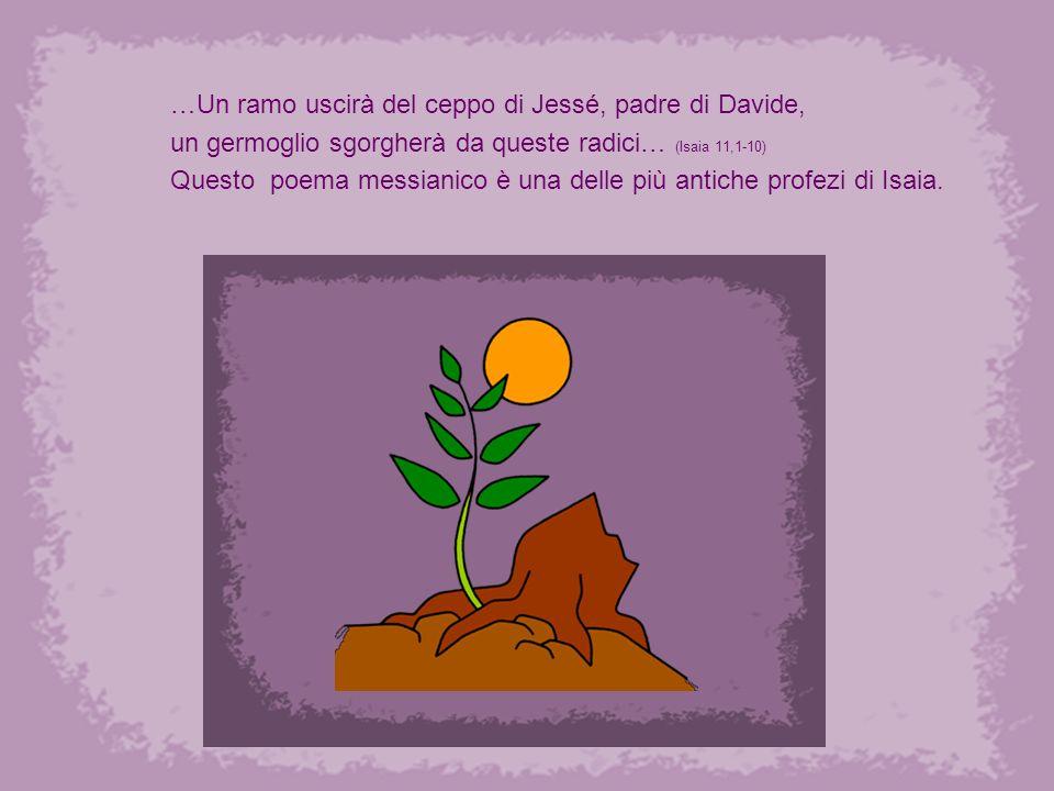 La venuta del Signore annuncia un cambiamento importante : la verità si rivelerà alla luce del giorno e la giustizia rifiorerà.