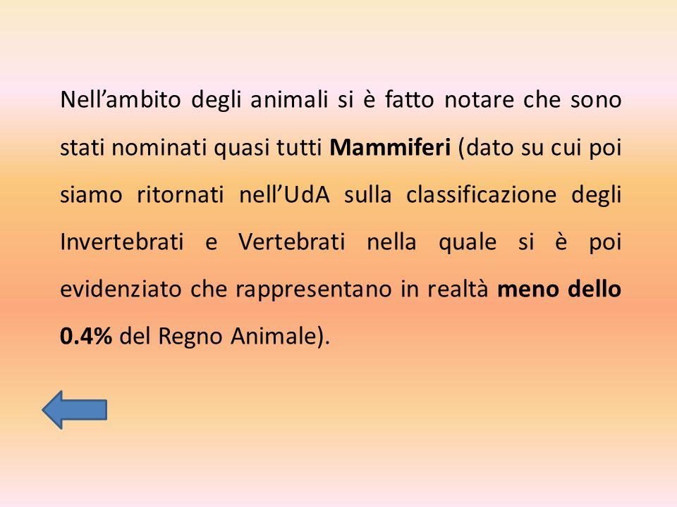Nellambito degli animali si è fatto notare che sono stati nominati quasi tutti Mammiferi (dato su cui poi siamo ritornati nellUdA sulla classificazione degli Invertebrati e Vertebrati nella quale si è poi evidenziato che rappresentano in realtà meno dello 0.4% del Regno Animale).