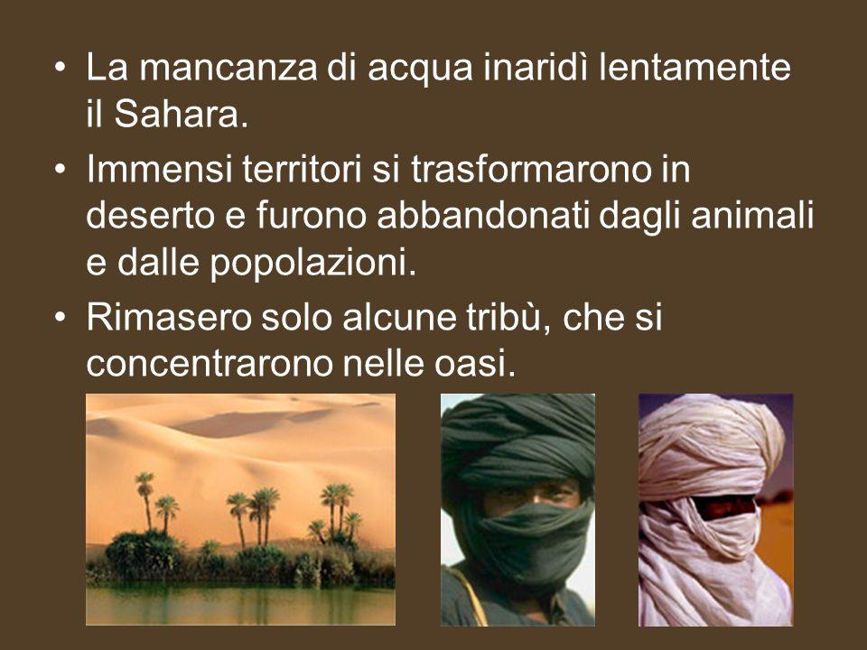 La mancanza di acqua inaridì lentamente il Sahara. Immensi territori si trasformarono in deserto e furono abbandonati dagli animali e dalle popolazion