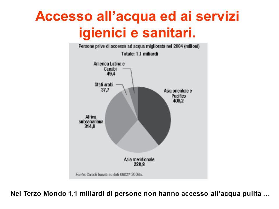 Accesso allacqua ed ai servizi igienici e sanitari. Nel Terzo Mondo 1,1 miliardi di persone non hanno accesso allacqua pulita …