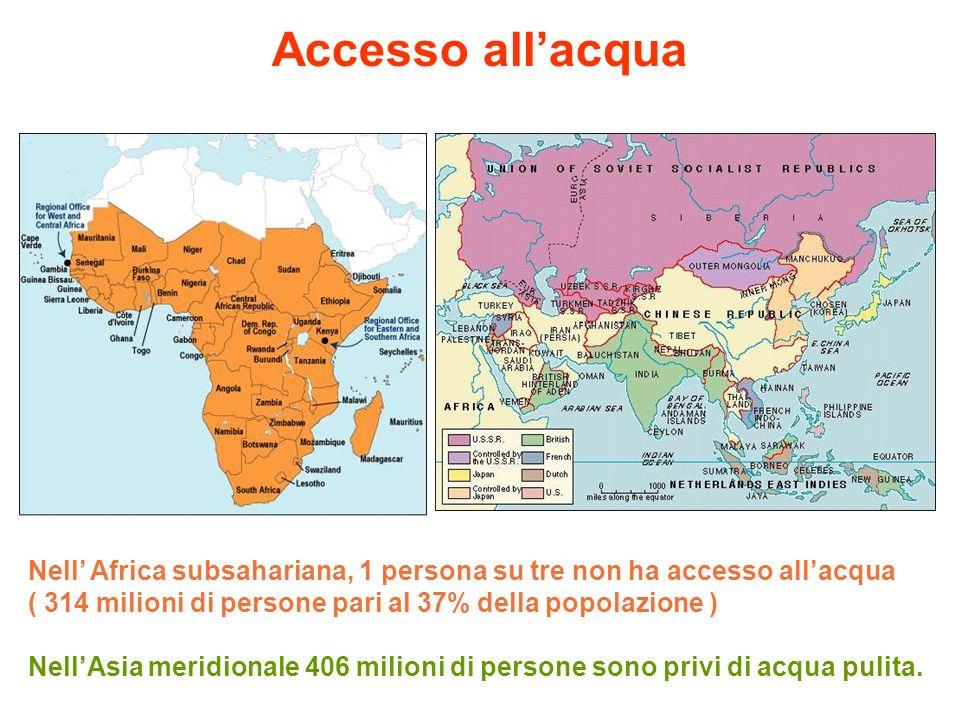 Nell Africa subsahariana, 1 persona su tre non ha accesso allacqua ( 314 milioni di persone pari al 37% della popolazione ) NellAsia meridionale 406 m