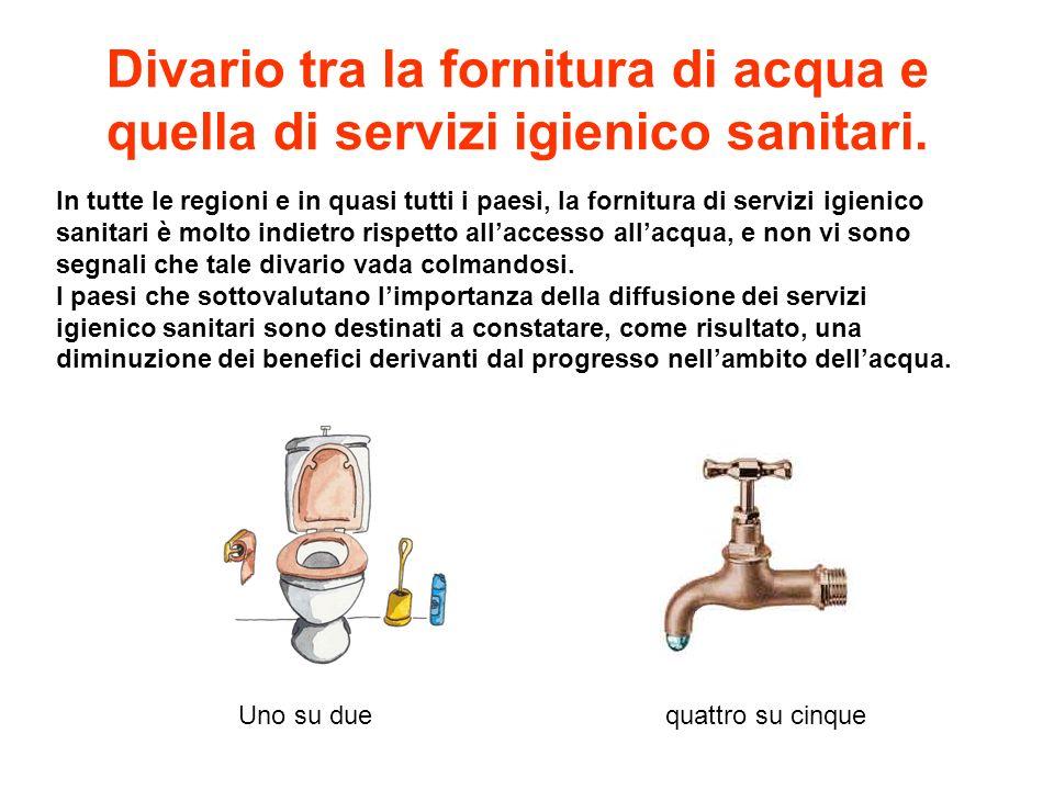 In tutte le regioni e in quasi tutti i paesi, la fornitura di servizi igienico sanitari è molto indietro rispetto allaccesso allacqua, e non vi sono s