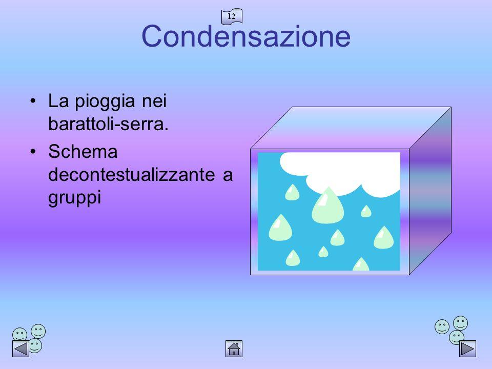 12 Condensazione La pioggia nei barattoli-serra. Schema decontestualizzante a gruppi