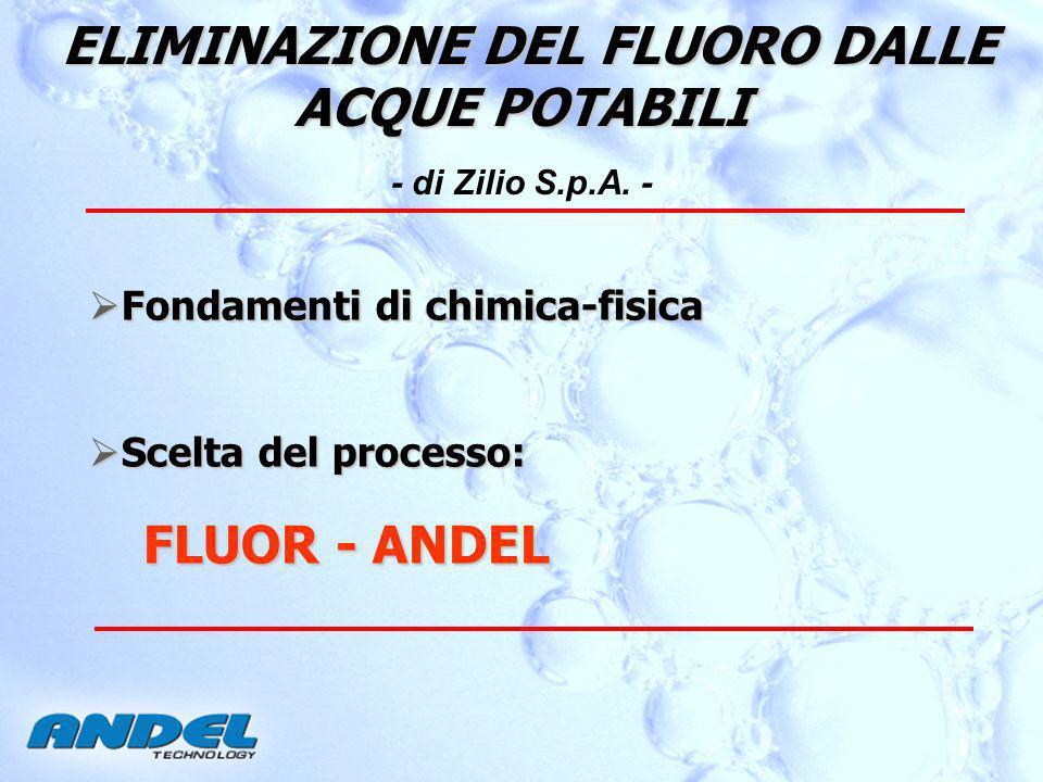 ELIMINAZIONE DEL FLUORO DALLE ACQUE POTABILI ELIMINAZIONE DEL FLUORO DALLE ACQUE POTABILI - di Zilio S.p.A.