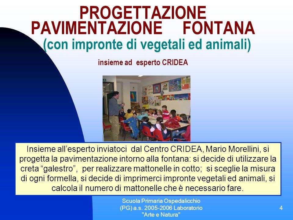 Scuola Primaria Ospedalicchio (PG) a.s.