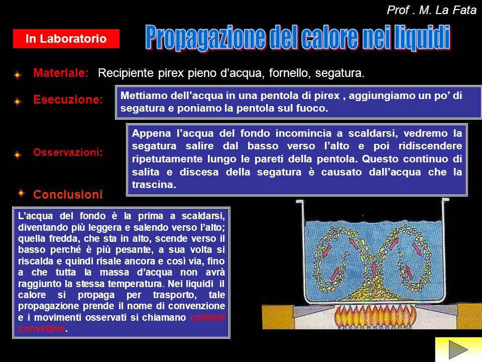 In assenza di materia il calore si propaga per irraggiamento: Questo fenomeno ci indica che il calore si può propagare da un corpo allaltro anche quando fra i due non cè interposta alcuna sostanza.