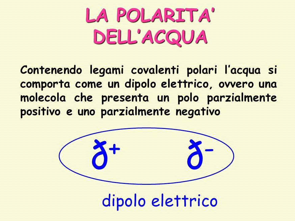 LA POLARITA DELLACQUA Contenendo legami covalenti polari lacqua si comporta come un dipolo elettrico, ovvero una molecola che presenta un polo parzial