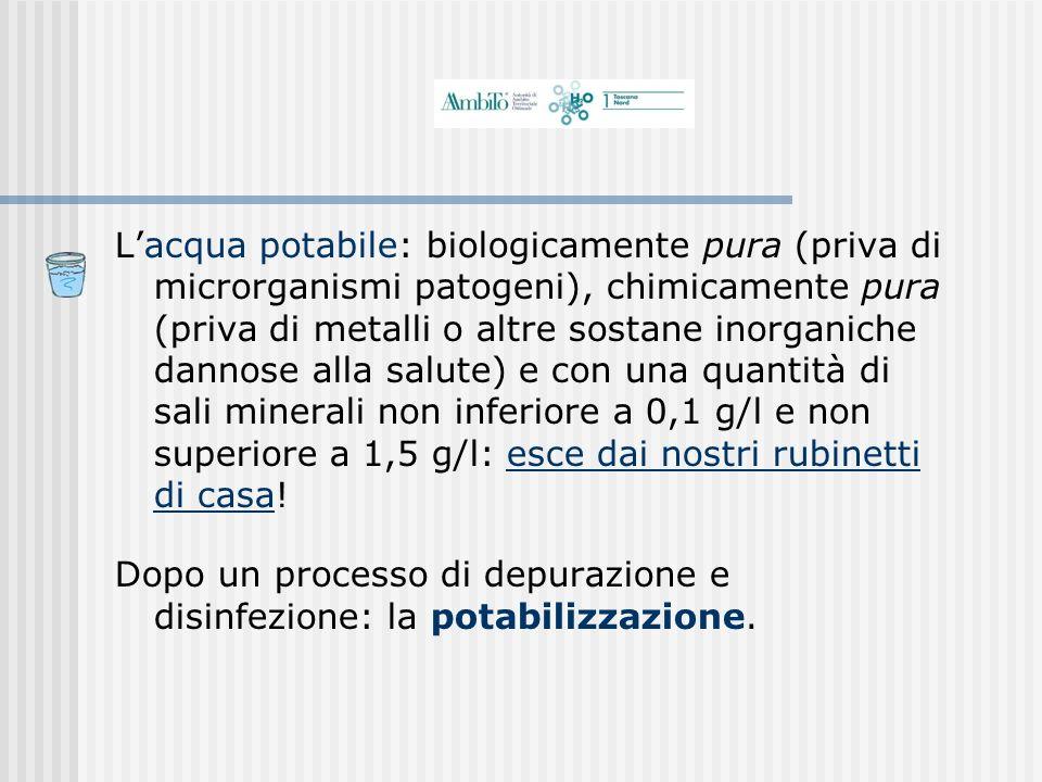 Lacqua potabile: biologicamente pura (priva di microrganismi patogeni), chimicamente pura (priva di metalli o altre sostane inorganiche dannose alla s