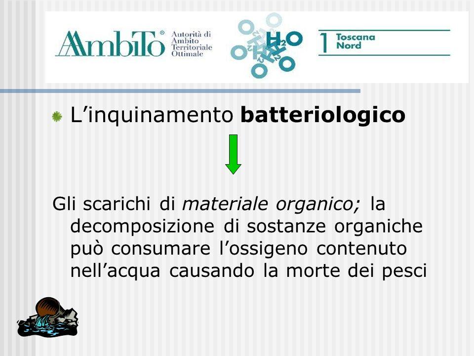Linquinamento batteriologico Gli scarichi di materiale organico; la decomposizione di sostanze organiche può consumare lossigeno contenuto nellacqua c