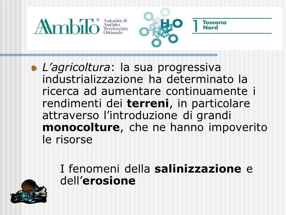 Lagricoltura: la sua progressiva industrializzazione ha determinato la ricerca ad aumentare continuamente i rendimenti dei terreni, in particolare att