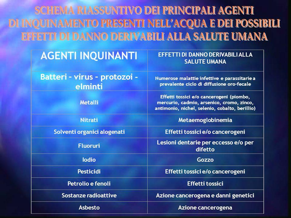 AGENTI INQUINANTI EFFETTI DI DANNO DERIVABILI ALLA SALUTE UMANA Batteri – virus – protozoi - elminti Numerose malattie infettive e parassitarie a prev