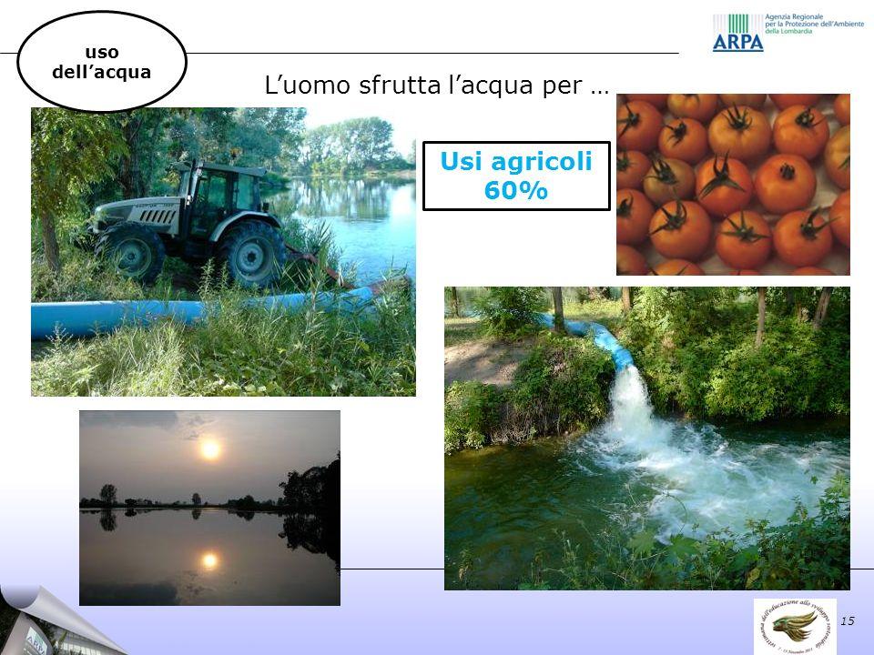 Luomo sfrutta lacqua per … Usi agricoli 60% 15 uso dellacqua