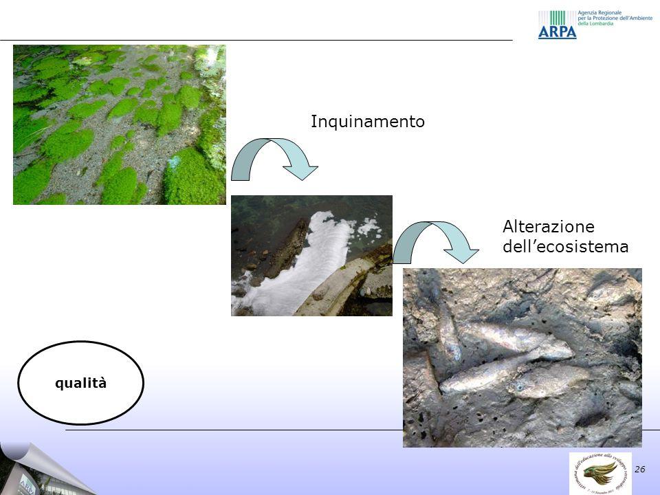 Inquinamento Alterazione dellecosistema 26 qualità