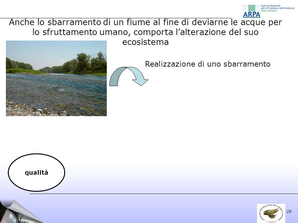 Realizzazione di uno sbarramento 28 qualità Anche lo sbarramento di un fiume al fine di deviarne le acque per lo sfruttamento umano, comporta lalterazione del suo ecosistema