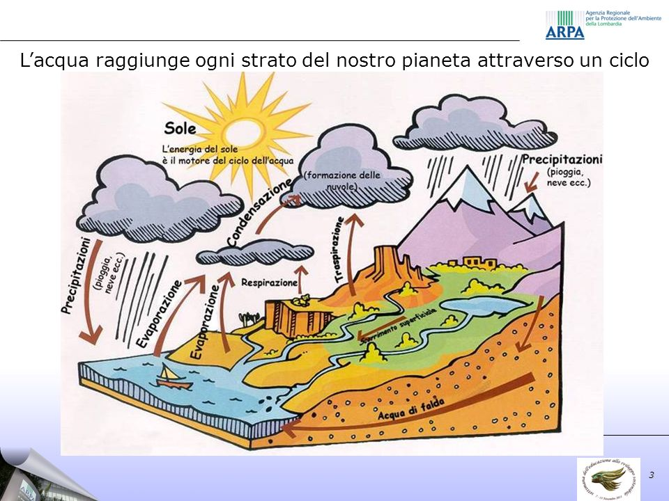 Lacqua raggiunge ogni strato del nostro pianeta attraverso un ciclo 3