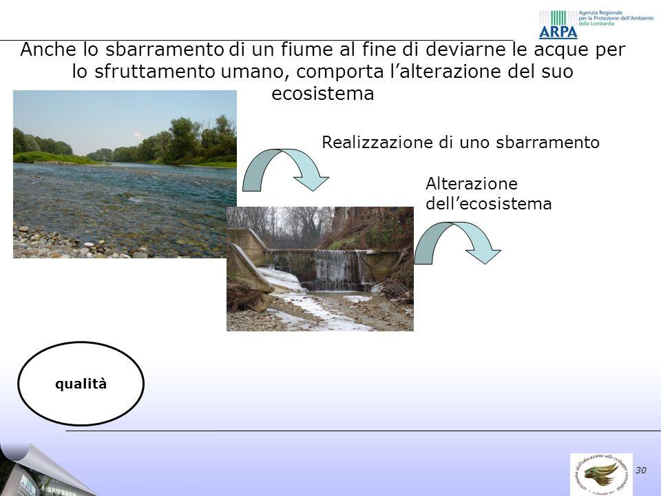 Alterazione dellecosistema 30 qualità Anche lo sbarramento di un fiume al fine di deviarne le acque per lo sfruttamento umano, comporta lalterazione del suo ecosistema Realizzazione di uno sbarramento