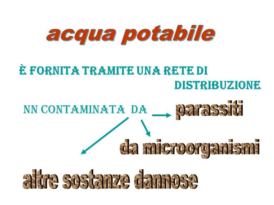 avendo origine da una falda O da un giacimento sotterraneo Proviene da 1 o + sorgenti naturali perforate Ed ha caratteristiche igieniche particolari Ed, eventualmente, proprietà favorevoli alla salute