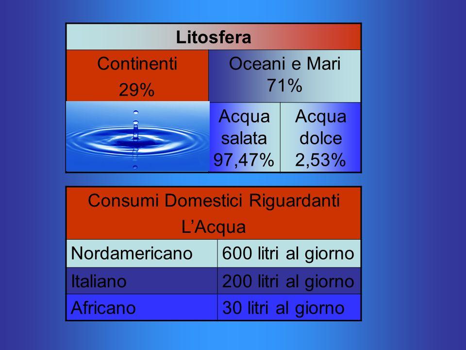 Litosfera Continenti 29% Oceani e Mari 71% Acqua salata 97,47% Acqua dolce 2,53% Consumi Domestici Riguardanti LAcqua Nordamericano600 litri al giorno