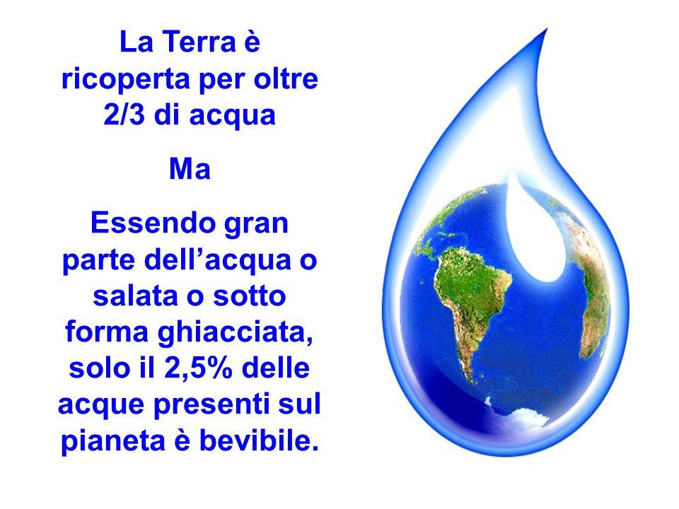 La Terra è ricoperta per oltre 2/3 di acqua Ma Essendo gran parte dellacqua o salata o sotto forma ghiacciata, solo il 2,5% delle acque presenti sul p