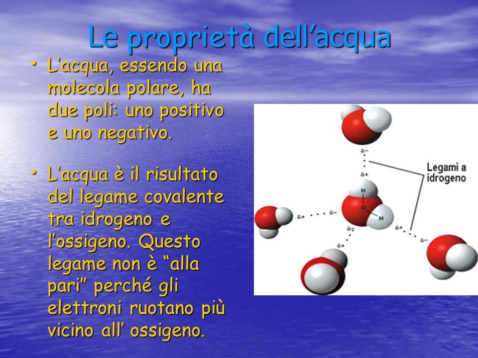 Le proprietà dellacqua Lacqua, essendo una molecola polare, ha due poli: uno positivo e uno negativo. Lacqua, essendo una molecola polare, ha due poli