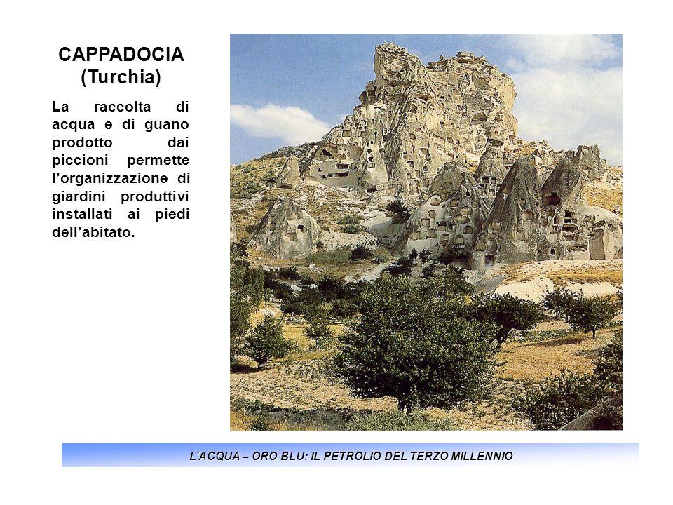 LACQUA – ORO BLU: IL PETROLIO DEL TERZO MILLENNIO CAPPADOCIA (Turchia) La raccolta di acqua e di guano prodotto dai piccioni permette lorganizzazione