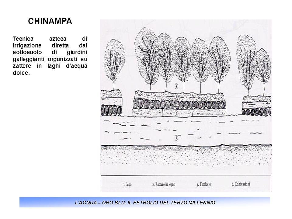 CHINAMPA Tecnica azteca di irrigazione diretta dal sottosuolo di giardini galleggianti organizzati su zattere in laghi dacqua dolce. LACQUA – ORO BLU: