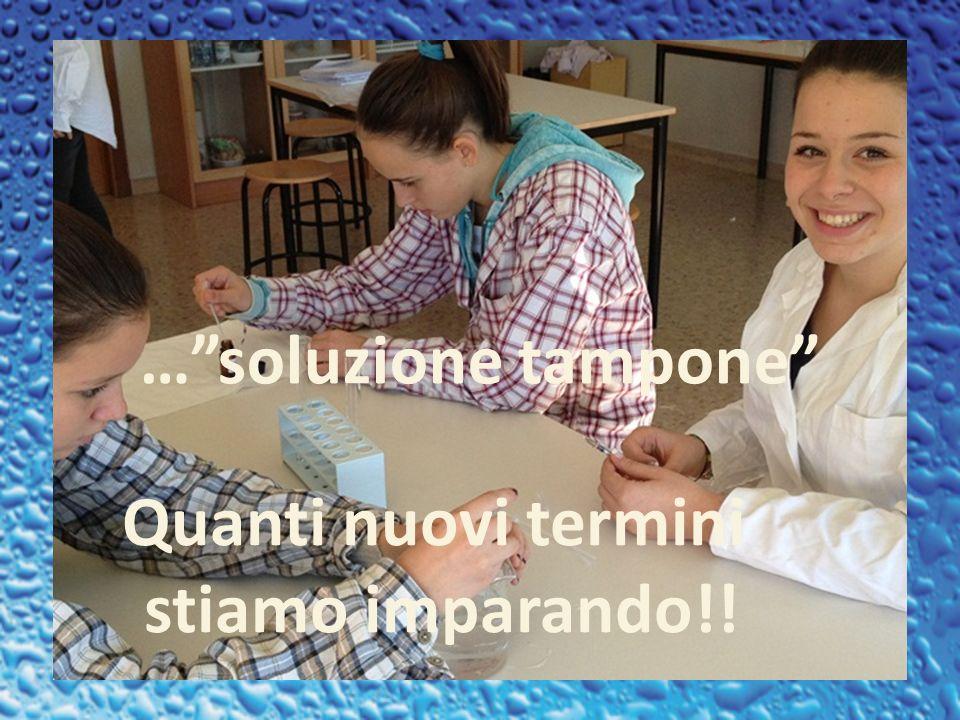 …soluzione tampone Quanti nuovi termini stiamo imparando!!