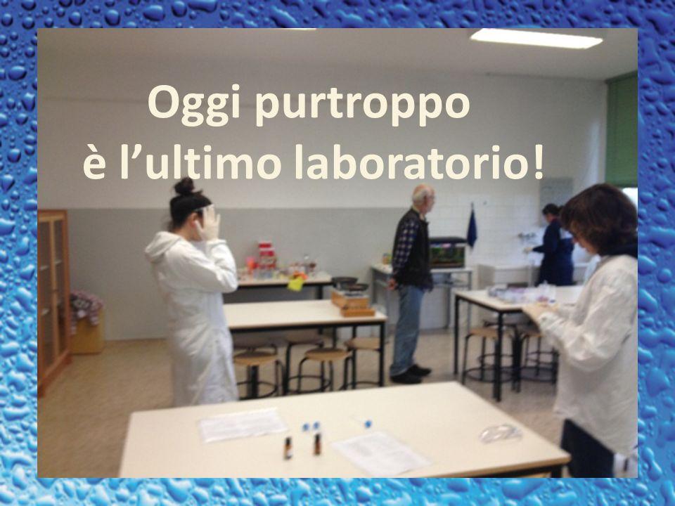 Oggi purtroppo è lultimo laboratorio!