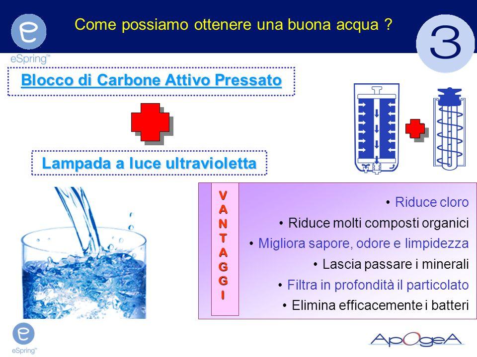 Advantages Come possiamo ottenere una buona acqua ? Riduce cloro Riduce molti composti organici Migliora sapore, odore e limpidezza Lascia passare i m