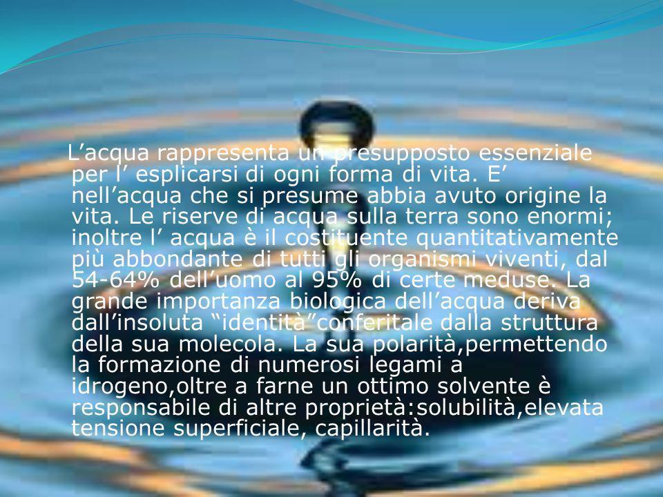 Lacqua rappresenta un presupposto essenziale per l esplicarsi di ogni forma di vita. E nellacqua che si presume abbia avuto origine la vita. Le riserv