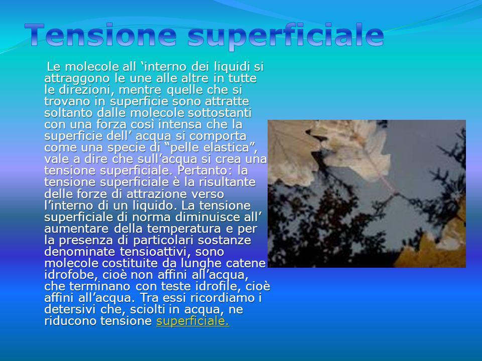 La tensione superficiale è responsabile della forma assunta dalle gocce di un liquido.