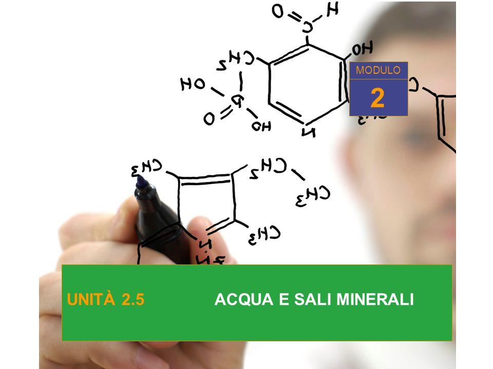 UNITÀ 2.5 ACQUA E SALI MINERALI 2 MODULO