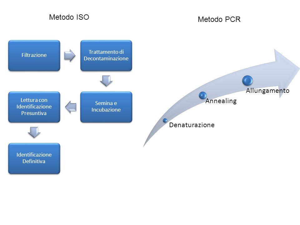 Filtrazione Trattamento di Decontaminazione Semina e Incubazione Lettura con Identificazione Presuntiva Identificazione Definitiva Metodo ISO Denaturazione Annealing Allungamento Metodo PCR
