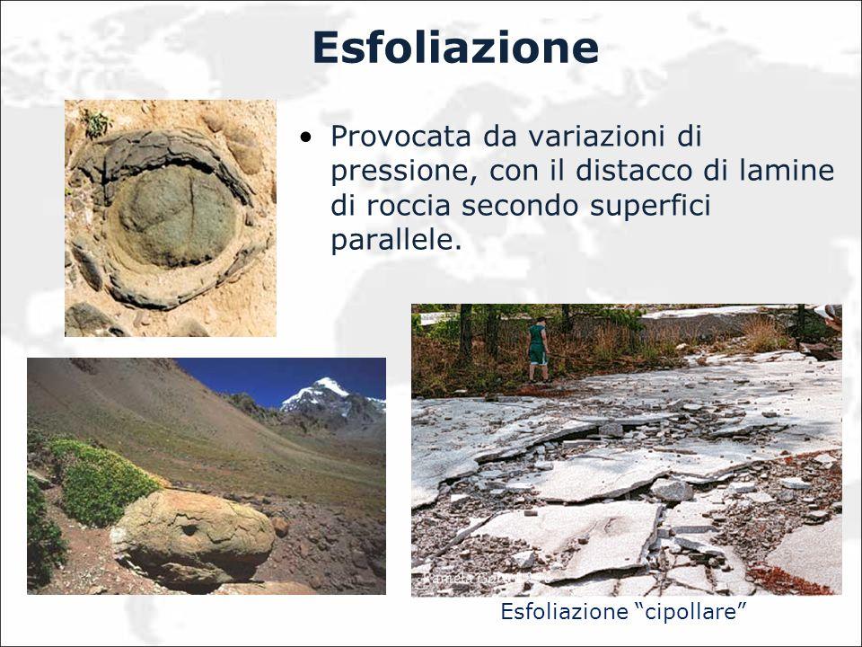 Esfoliazione Provocata da variazioni di pressione, con il distacco di lamine di roccia secondo superfici parallele. Esfoliazione cipollare