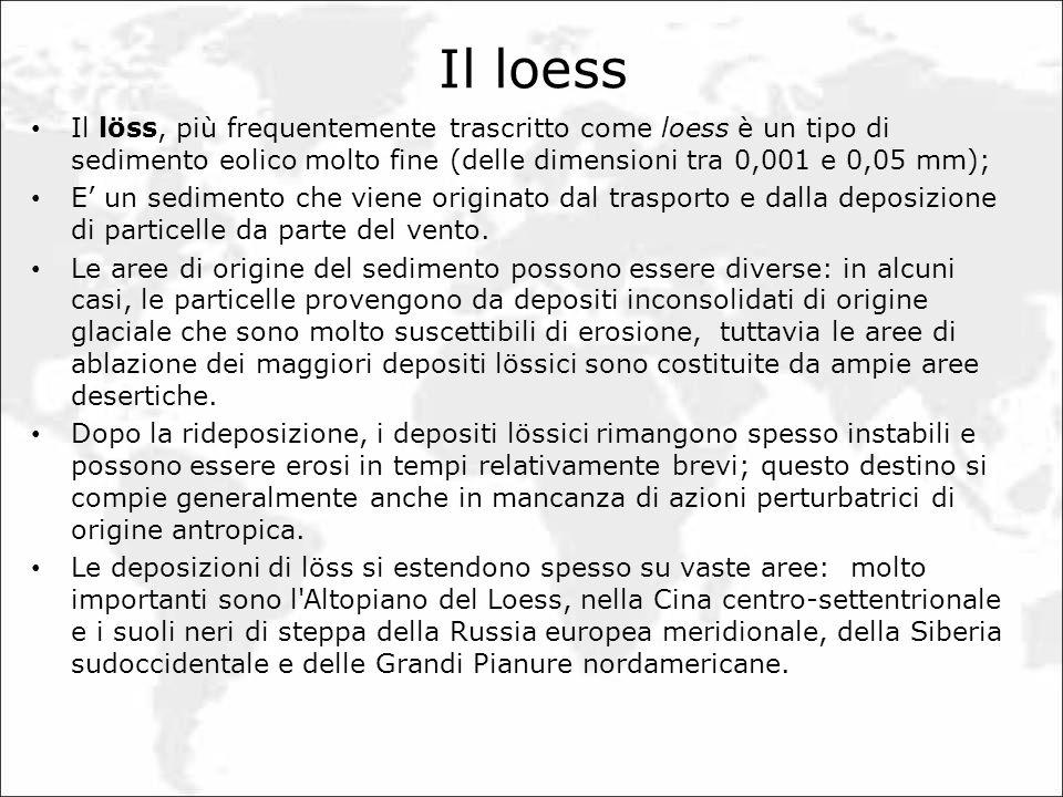 Il loess Il löss, più frequentemente trascritto come loess è un tipo di sedimento eolico molto fine (delle dimensioni tra 0,001 e 0,05 mm); E un sedim