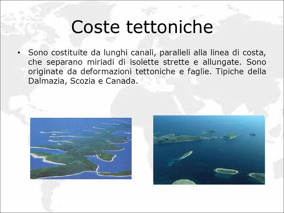 Coste tettoniche Sono costituite da lunghi canali, paralleli alla linea di costa, che separano miriadi di isolette strette e allungate. Sono originate