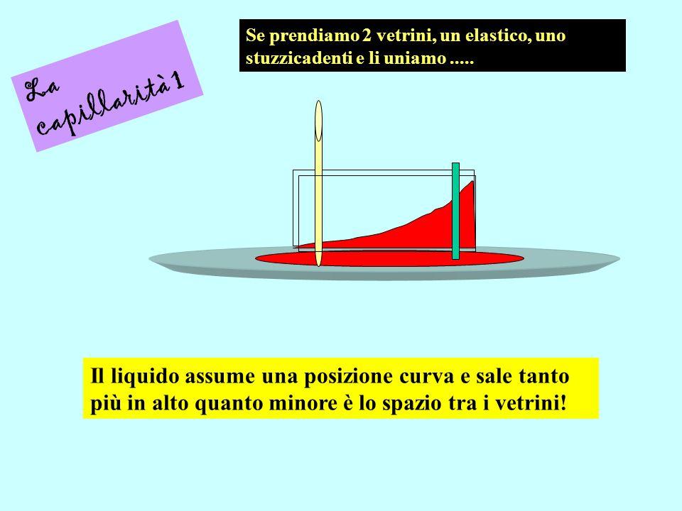 La capillarità 1 Se prendiamo 2 vetrini, un elastico, uno stuzzicadenti e li uniamo..... Il liquido assume una posizione curva e sale tanto più in alt