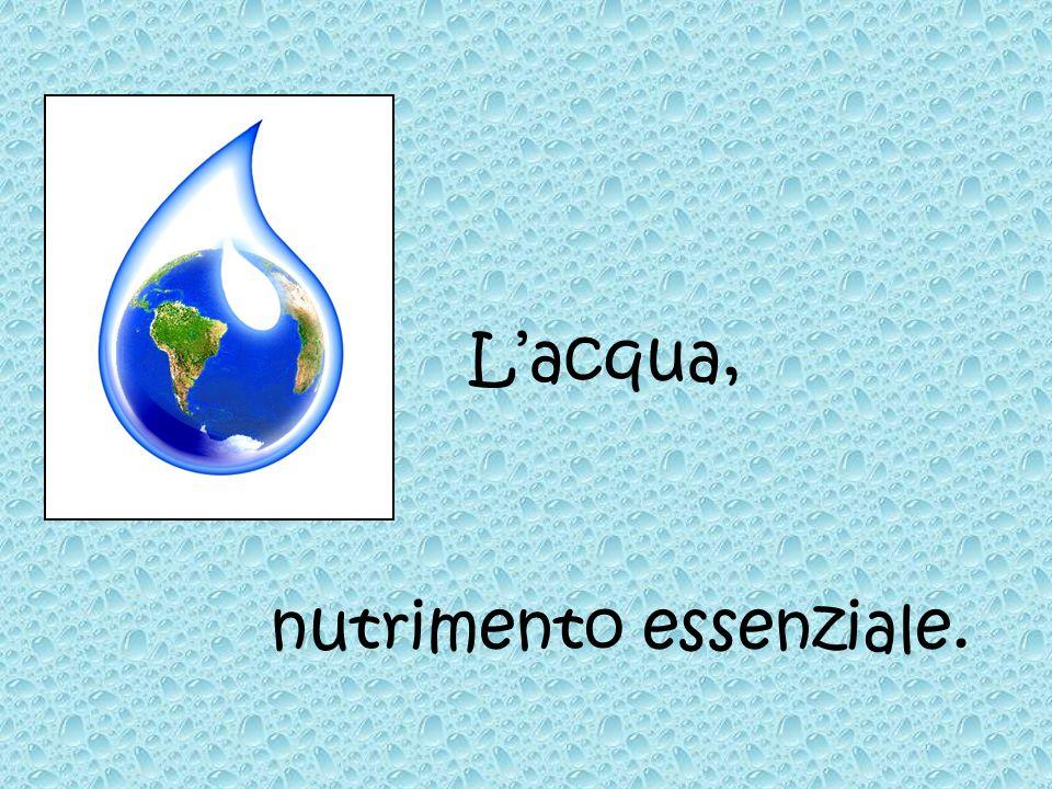 Lacqua è il più importante e il più abbondante elemento liquido sulla Terra.
