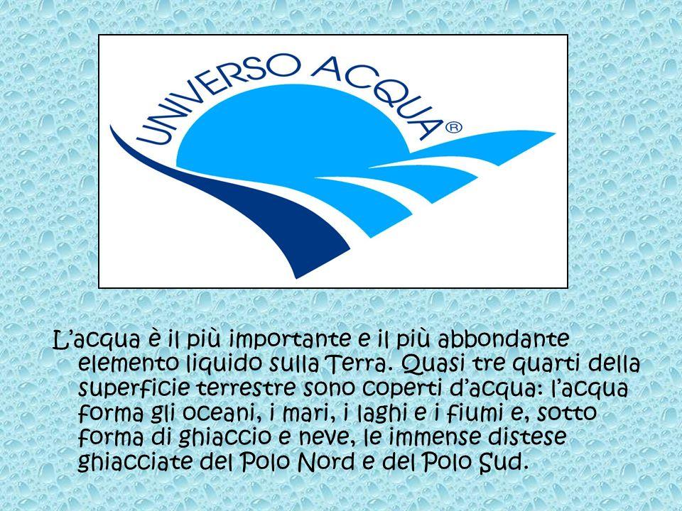 Lacqua è il più importante e il più abbondante elemento liquido sulla Terra. Quasi tre quarti della superficie terrestre sono coperti dacqua: lacqua f