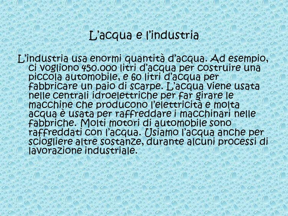 Lindustria usa enormi quantità dacqua. Ad esempio, ci vogliono 450.000 litri dacqua per costruire una piccola automobile, e 60 litri dacqua per fabbri